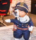 5 Mimi policajtka DSC_9398mimi